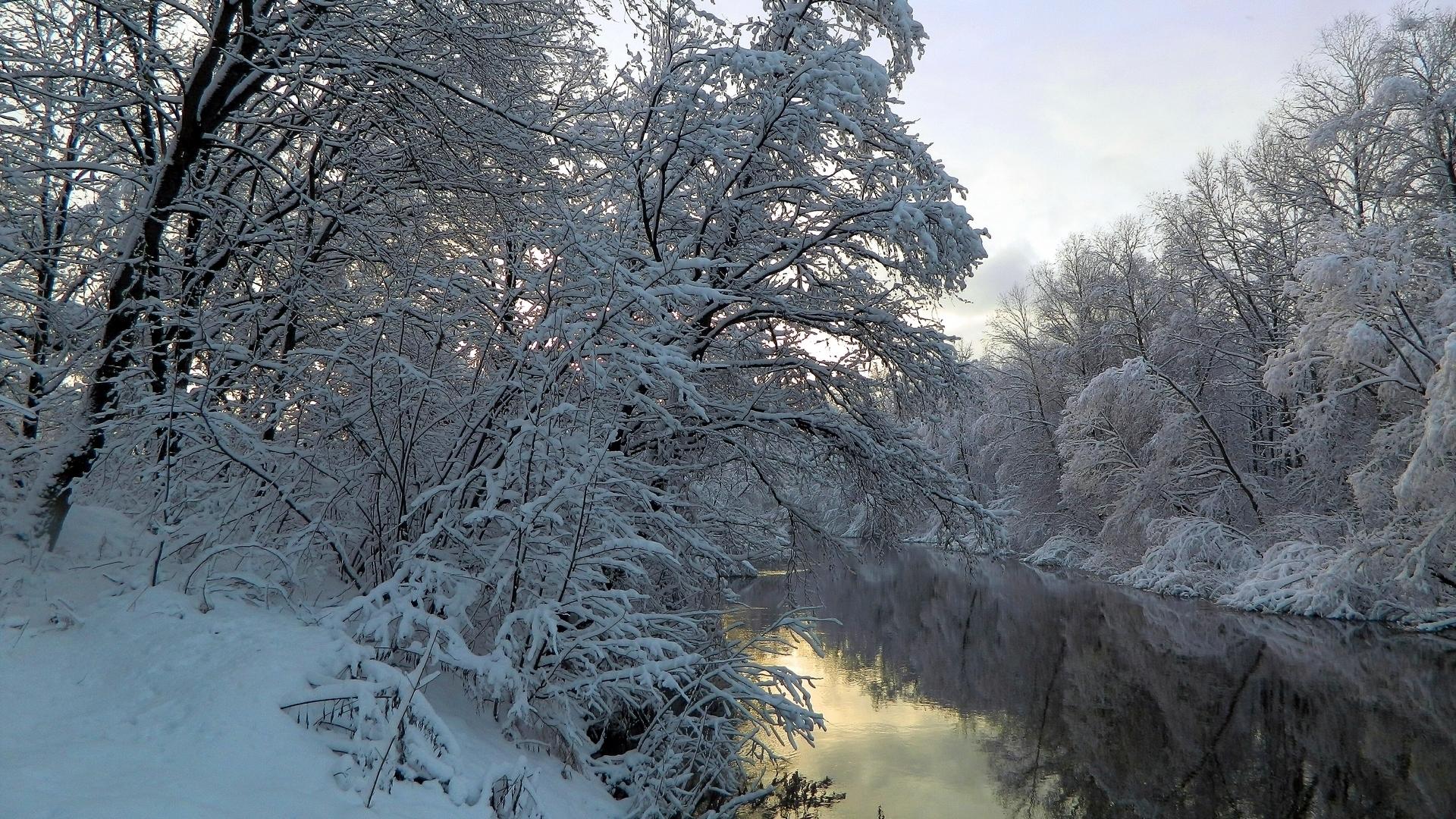 towards the snowy - photo #4