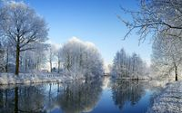 Snowy trees reflecting in the mirror of the lake wallpaper 1920x1080 jpg