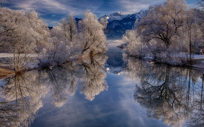Snowy trees reflecting in the mountain lake wallpaper