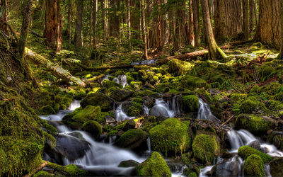 Sol Duc River wallpaper