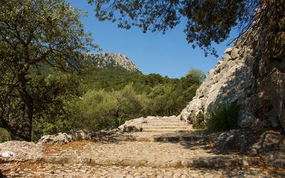 Steps outside the Santuari de Lluc monastery wallpaper