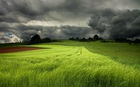 Storm clouds over the green field wallpaper 1920x1200 jpg