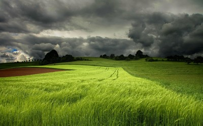 Storm clouds over the green field wallpaper