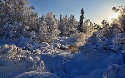 Sun shining above the snowy nature wallpaper