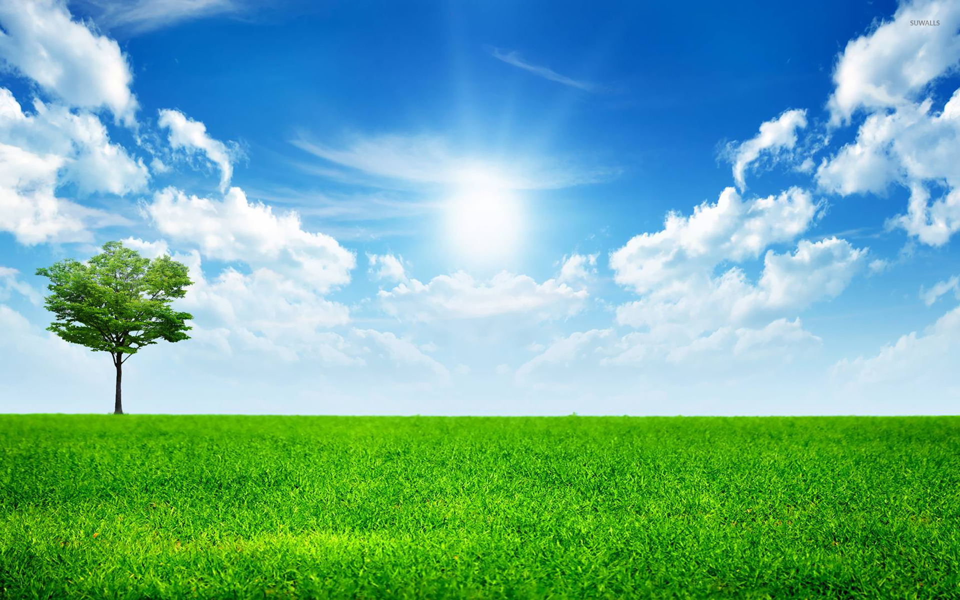 Sunny blue sky wallpaper Nature wallpapers 14782