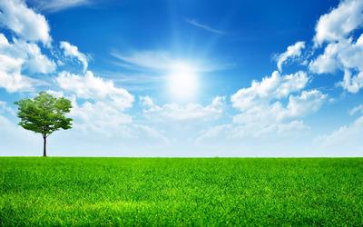 Sunny blue sky wallpaper