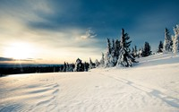 Sunny day in the snowy mountains wallpaper 2560x1600 jpg