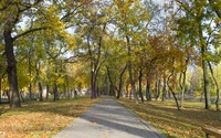 Sunny fall day in the park wallpaper 2880x1800 jpg