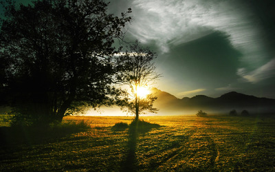 Sunrise on the green field wallpaper