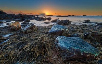 Sunset at a rocky beach wallpaper