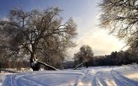 Sunset light reflected in the snow wallpaper 1920x1080 jpg