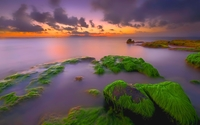 Sunset over the mossy rocks wallpaper 1920x1200 jpg