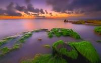 Sunset over the mossy rocks wallpaper 1920x1200 jpg
