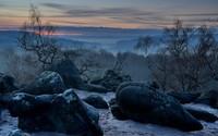 Sunset over the mystic forest wallpaper 2560x1600 jpg