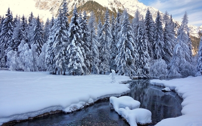Thick snow on the river side wallpaper