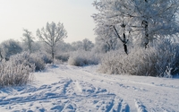 Trails in the snow wallpaper 1920x1080 jpg