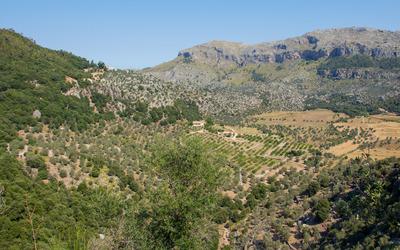 Valley in Serra de Tramuntana wallpaper