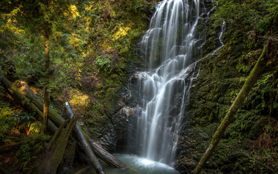 Virgin nature by the waterfall wallpaper