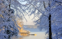 Warm sun reflected on the snowy trees by the lake wallpaper 1920x1200 jpg
