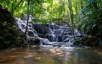Water pouring on the rocky steps in the forest wallpaper 2560x1600 jpg