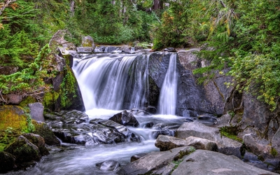 Waterfall in the forest wallpaper