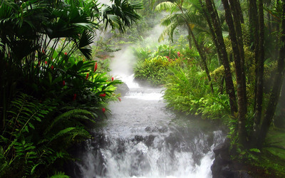 Waterfall in the jungle wallpaper