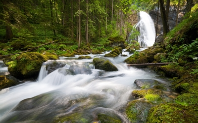Waterfall on mossy rocks in the forest wallpaper