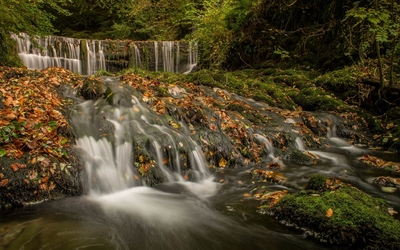 Waterfall washing the autumn leaves in the river wallpaper