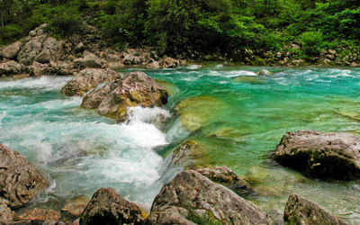 Whirling river in the forest wallpaper