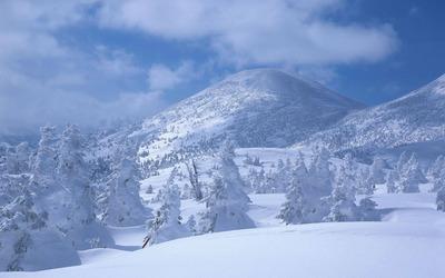 White alpine landscape wallpaper