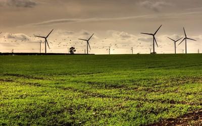 Windmills at sunset wallpaper