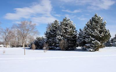 Winter landscape [12] wallpaper
