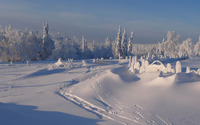 Winter sunny day wallpaper 2880x1800 jpg