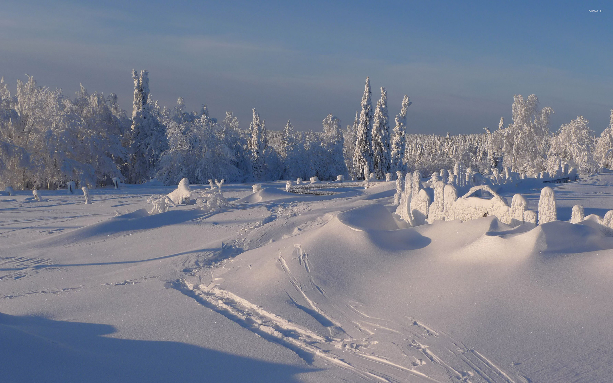 winter sunny day wallpaper nature wallpapers 38564