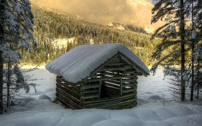 Wooden hut in the snowy forest wallpaper