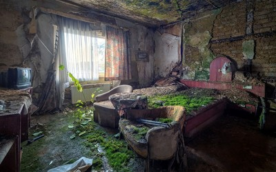 Abandoned mossy hotel room wallpaper