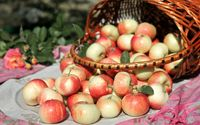 Apples in a basket wallpaper 2560x1600 jpg