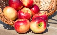 Apples spilling from a basket wallpaper 3840x2160 jpg