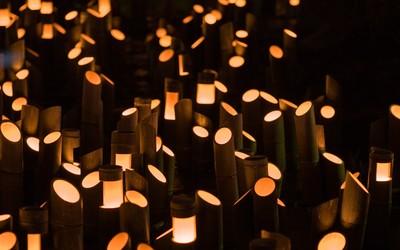 Bamboo candles wallpaper