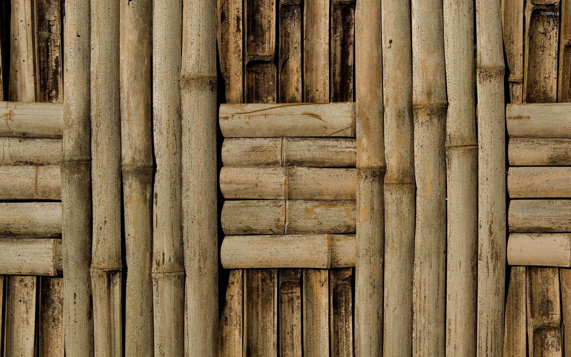 Bamboo wall wallpaper photography wallpapers 22309 for Bamboo wallpaper for walls