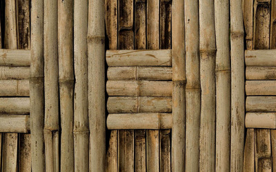Bamboo wall wallpaper