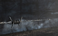 Barbed wire wallpaper 1920x1200 jpg