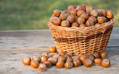 Basket of hazelnuts on the wooden table wallpaper