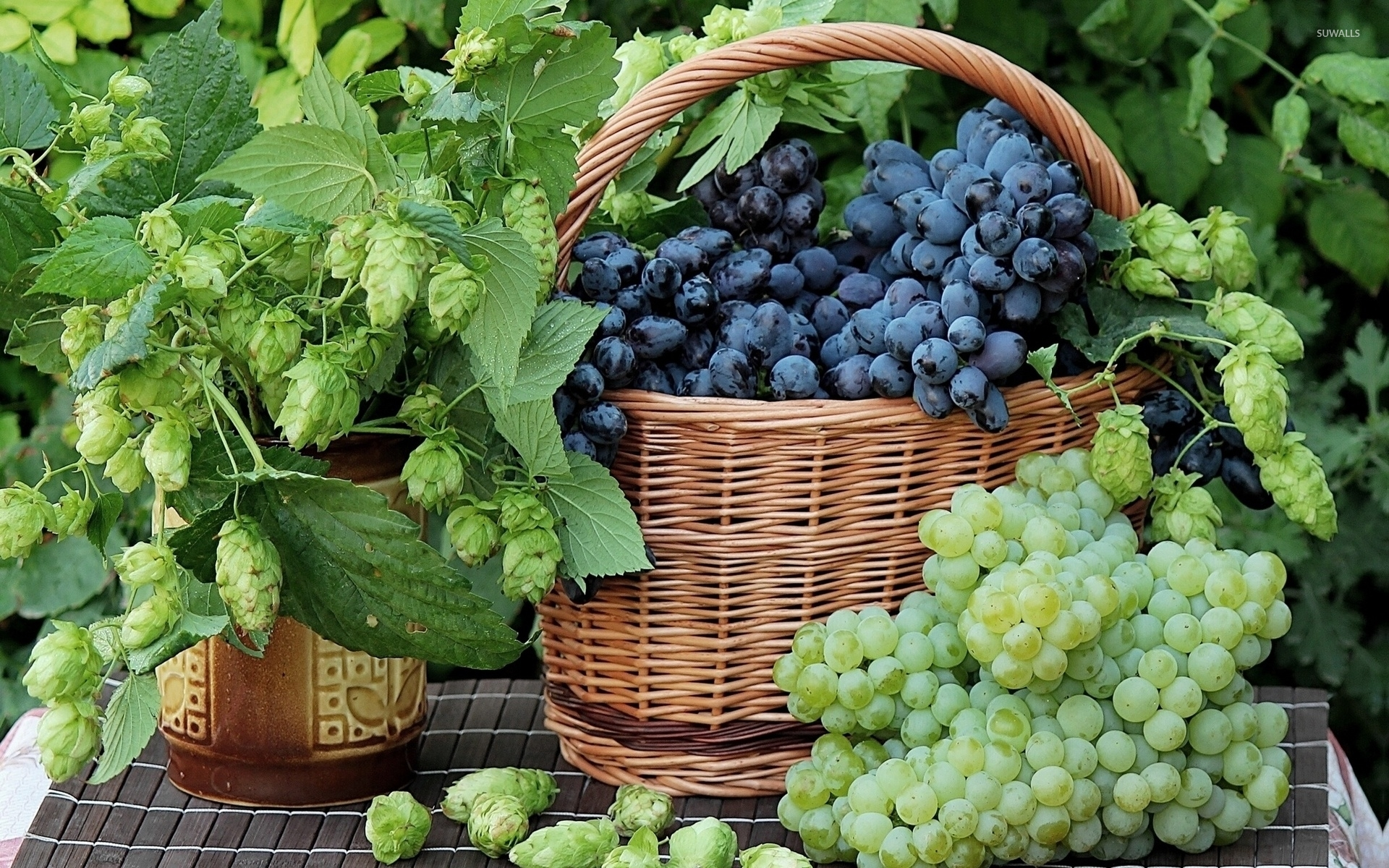 Black grapes in a straw basket wallpaper - Photography ...