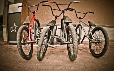 BMX Sport bikes wallpaper