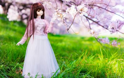 Bride doll in the grass wallpaper