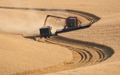 Combine harvester wallpaper