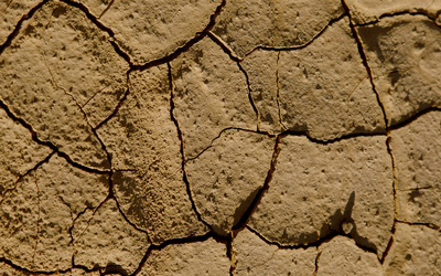 Cracked mud wallpaper