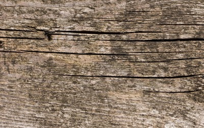 Cracked old wood wallpaper