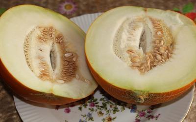 Cut melon wallpaper